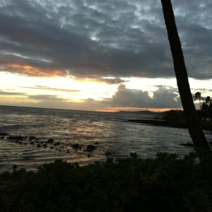 Evening Stroll. Love Living Kauai.