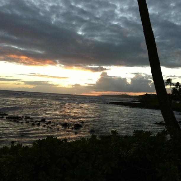 Evening Ocean View