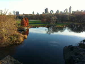Meeting Spot for Morning Walk and Talk Belvedere Castle